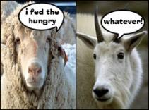 Goats Be Sayin'